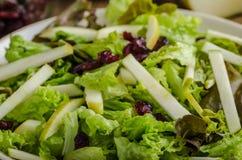 Waldort-Salat stockfoto