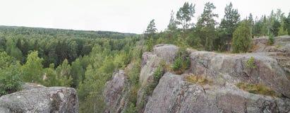 Waldpanoramaansicht vom Berg stockfoto