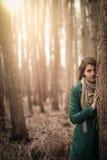Waldporträt Stockfoto