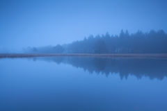 Waldschattenbild durch See im dichten Dämmerungsnebel Lizenzfreie Stockbilder