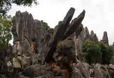 Waldsteine in Kunming, China Stockbilder