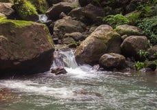 Waldstrom unter Steinen Säubern Sie Strom des kalten Wassers in den Bergen Lizenzfreie Stockbilder