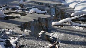 Waldstromflüsse in Landschaft die Winterwaldnatur schneien, stock video footage