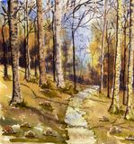 Waldszene stockbild