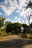 Waldszene am Anfang des Herbstes stockbilder