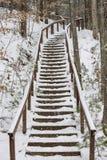 Waldtreppenhaus, Michigan, Winter Lizenzfreies Stockfoto