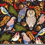 Waldvögel nahtlos stock abbildung