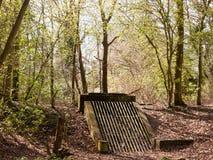 Waldwald mit einem Beton-und Eisen-Gitter Lizenzfreies Stockbild