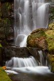 Waldwasserfall Stockbild