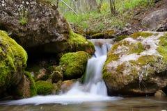 Waldwasserfall Lizenzfreie Stockbilder