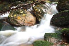 Waldwasserfall 2 Lizenzfreie Stockbilder