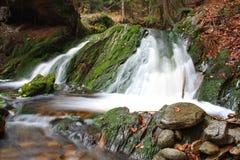 Waldwasserfall 3 Lizenzfreie Stockfotos