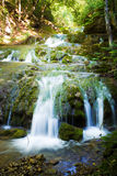 Waldwasserfall Stockfotografie