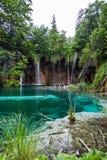 Waldwasserfall fällt in einen Türkis, haarscharfer See Plitvice, Nationalpark, Kroatien stockbilder