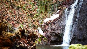Waldwasserfall im Winter stock footage