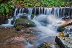 Waldwasserfall und -steine überwältigt mit Moos lizenzfreies stockfoto