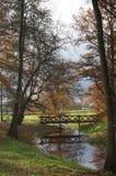 Waldweg im Herbst stockbilder