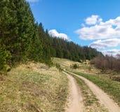 Waldweg an KOHMak Stockfoto