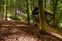 Waldweg mit Einziehengestell Stockbild