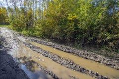 Waldweg nach dem Regen pfütze schlamm lizenzfreie stockfotos