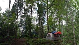 Waldzelt-Kampieren Stockbilder