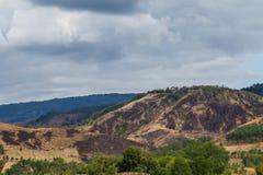 Waldzerstörung auf dem Berg Stockfotografie