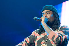 Wale Royalty Free Stock Photos