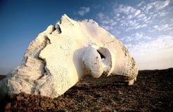 Wale bone. In skeleton coast in Namibia Royalty Free Stock Photos