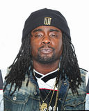 Wale Stock Photography