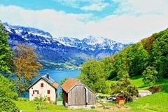 Walensee湖岸农厂视图瑞士 免版税图库摄影