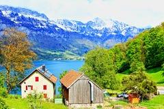 Walensee湖岸农厂视图瑞士 图库摄影