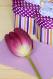 Walentynek lub matek dnia karta - Akcyjna fotografia Fotografia Royalty Free