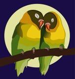 Walentynek papugi Zdjęcia Royalty Free