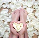 Walentynka dnia kwiatu serce w rękach Obrazy Royalty Free
