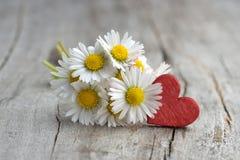 Walentynka dnia kwiaty obrazy stock