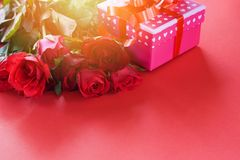 Walentynka dnia prezenta pudełka kwiatu miłości pojęcie, menchia prezent pudełko z tasiemkowego łęku czerwonymi różami/kwitniemy fotografia stock