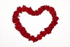 Walentynka dnia różany serce zdjęcia stock