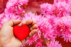 Walentynka dnia tło z ręka chwyta sercem Obraz Stock