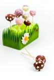 Walentynka torta wystrzały Fotografia Stock