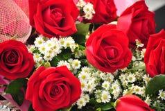 Walentynka Wzrastał Zdjęcia Royalty Free