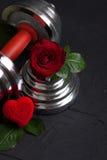 Walentynki bawją się tło z dumbbell, różanego i kierowego pudełkiem, Zdjęcia Stock