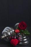 Walentynki bawją się tło z dumbbell, różanego i kierowego pudełkiem, Obraz Stock