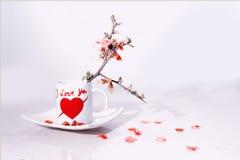 Walentynki filiżanka Fotografia Royalty Free