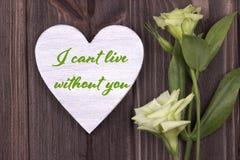 Walentynki karta z tekstem cant zieleń żywy bez ciebie Zdjęcie Stock