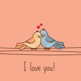 Walentynki ` s dnia kartka z pozdrowieniami z dwa ślicznymi kreskówki miłości ptakami Zdjęcia Royalty Free