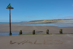 Wales on beach Stock Image