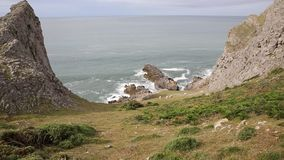 Wales Coast Mewslade Bay The Gower peninsula near to Rhossili beach with sheep stock footage