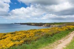 Wales Coast Path Pembrokeshire UK Royalty Free Stock Photography