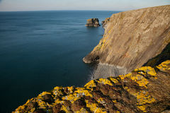 Wales coast path, Trefor. Yellow lichen covered rock on shale cliffs looking out towards a pebble beach and sea cliffs with the sea stack Trwyn y Tal in the Stock Photo