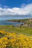 Wales Coastal Path Pembrokeshire UK Stock Image